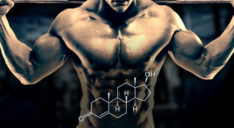 TRT ciclo de esteroides