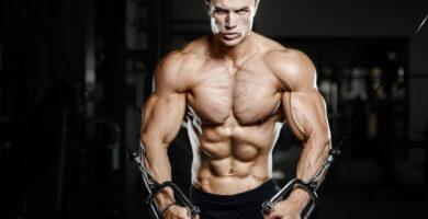 ciclo boldenona y testosterona