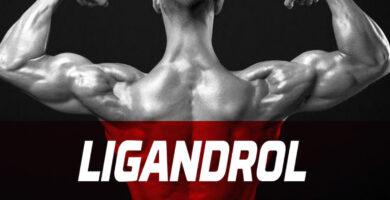 ciclo sarm con ligandrol